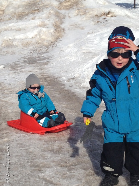 An English Mamma in Stockholm: boys on pulka sledge snow